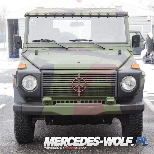 mercedes benz 250gd wolf 11 mercedes mercedes g class g force 1 en mercedes g. Black Bedroom Furniture Sets. Home Design Ideas