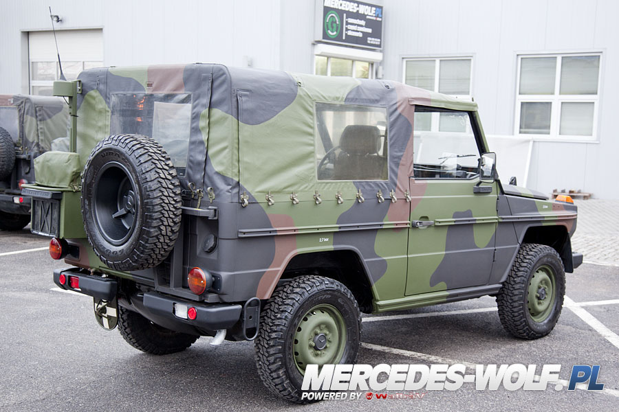 mercedes benz 250gd wolf 26t mercedes mercedes g class g force 1 en mercedes g. Black Bedroom Furniture Sets. Home Design Ideas
