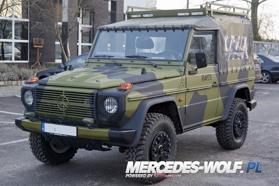 mercedes benz 290g td wolf mercedes mercedes g class g force 1 en mercedes g. Black Bedroom Furniture Sets. Home Design Ideas