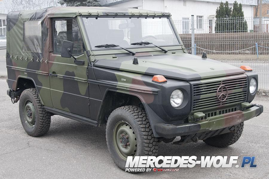 mercedes benz 250gd wolf 31 mercedes mercedes g class g force 1 en mercedes g. Black Bedroom Furniture Sets. Home Design Ideas