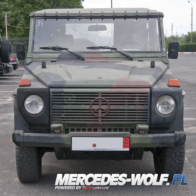 mercedes benz 250gd wolf 34 mercedes mercedes g class g force 1 en mercedes g. Black Bedroom Furniture Sets. Home Design Ideas