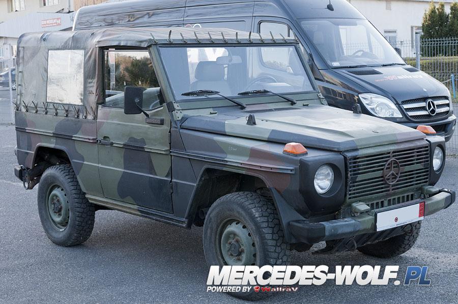 mercedes benz 250gd wolf 26 mercedes mercedes g class g force 1 en mercedes g. Black Bedroom Furniture Sets. Home Design Ideas
