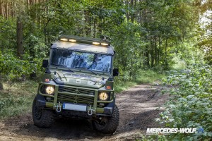 Danish Defence 290G TD - Mercedes Wolf G